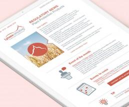 création template newsletter