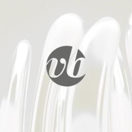 Création site internet Vincent Breed